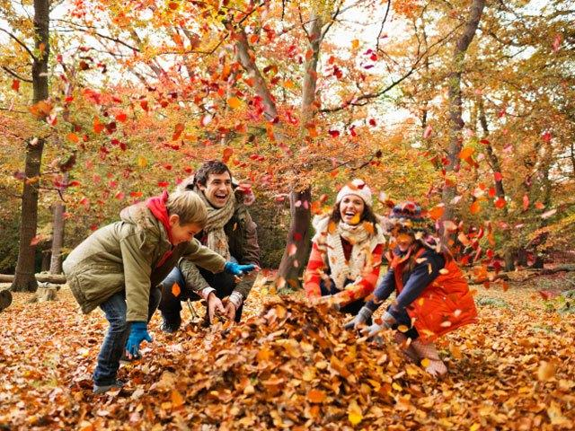 Minnetonka Breezes : Fun Fall Activities