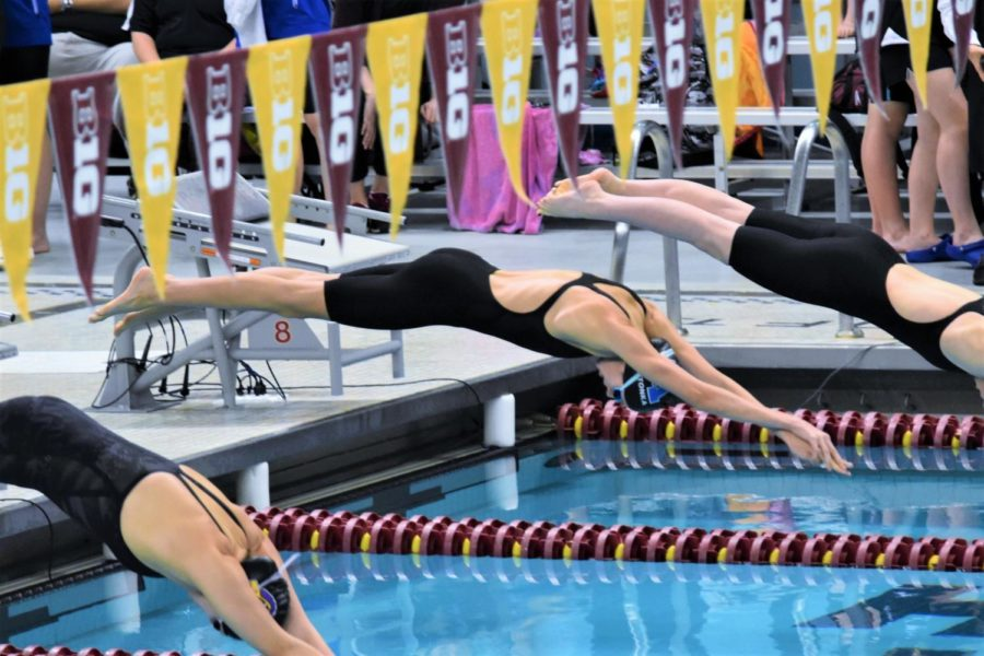 Girls' Swim & Dive Head to State 2017