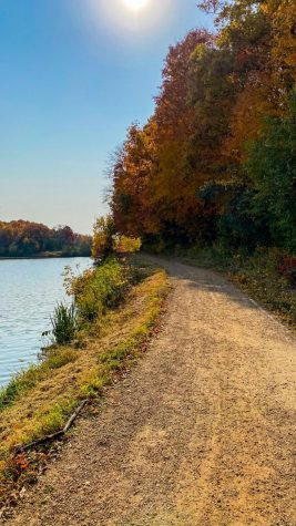 Exploring Local Trails: A Safe Relaxing Activity To Do During Quarantine