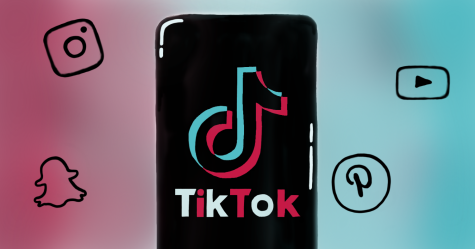 TikTok's Role in 2020